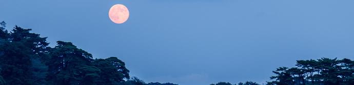雄島からの月